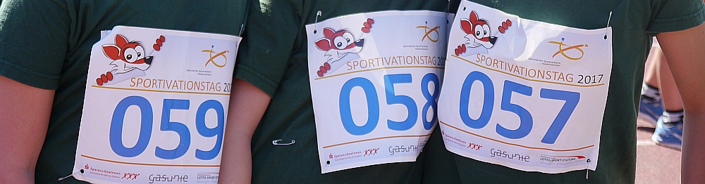 _sportivation03.png
